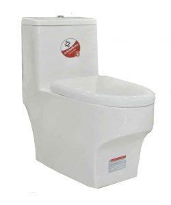 توالت فرنگی مدل ZI2199